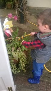 Watering the plants - one of Noah's many delights